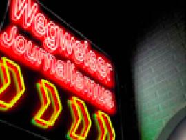Wegweiser Onlinejournalismus
